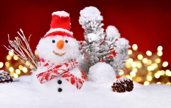 Weihnachtlicher Schneemann