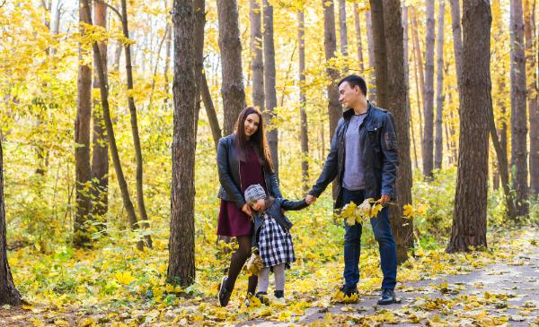 Ein ausgedehnter Herbstspaziergang ist wunderbar zum Material sammeln