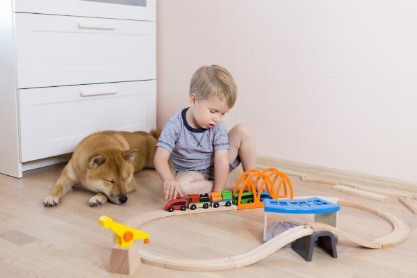 Kleiner Junge spielt mit Eisenbahn und Hund liegt daneben