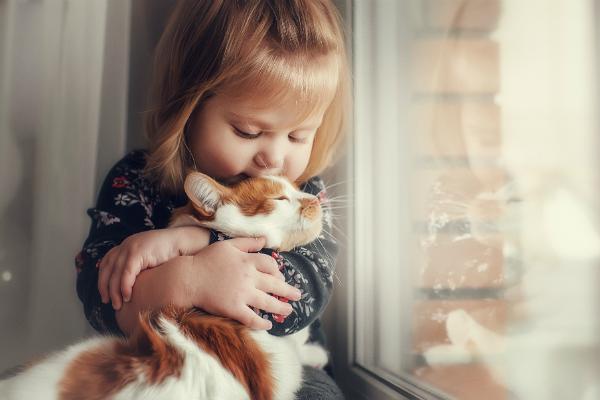 Kleines Maedchen schmust mit einer Katze