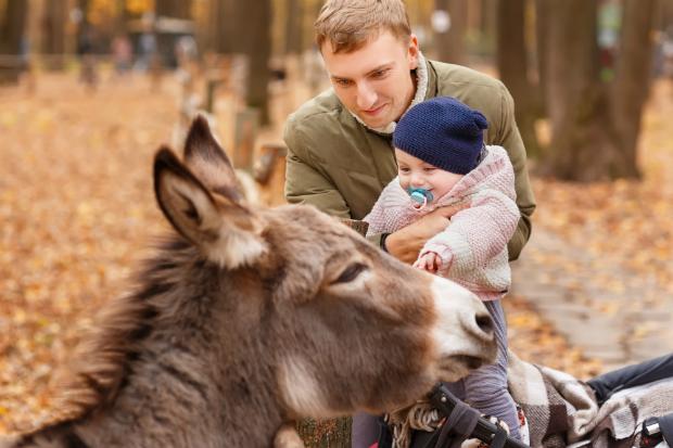 Ein Besuch im Zoo ist für die Kleinen ein ganz besonderes Abenteuer