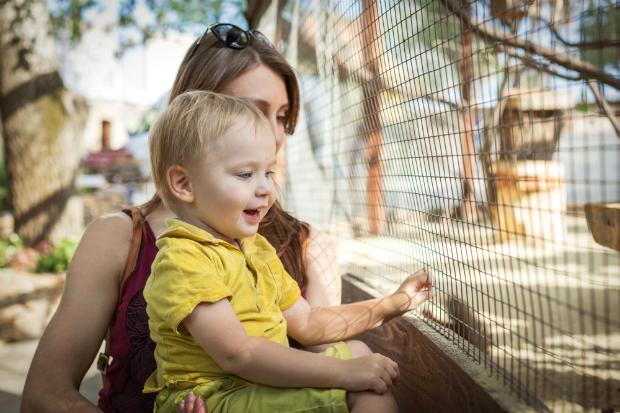 Was benötigt man alles für einen Zoo-Ausflug mit Baby?